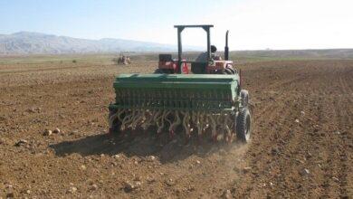 تصویر هزار و ۸۰۰ میلیارد ریال وام هفت سال گذشته به کشاورزان یزد پرداخت شد
